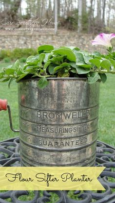 HGTV Gardens {Sifter Planter Photo Excitement}