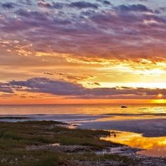 7 Essential Things to do in Cape Cod ...