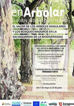 La importancia de los árboles singulares y los bosques maduros como reductos de biodiversidad, generadores de paisaje y dinamizadores de las economías rurales. Una guía de recursos informativos del CDAMA para la exposición enArbolar de la Fundación FRF a su paso por Zaragoza: con monográficos, artículos y enlaces centrados en árboles y bosques singulares de Aragón y otros lugares. La puedes descargar en http://www.zaragoza.es/contenidos/medioambiente/cda/arbolessingulares.pdf
