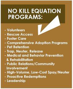 The programs of the No Kill equation
