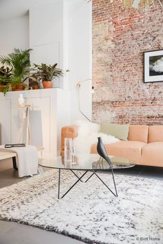 Exposed brick wall, soft white area rug, peach couch, draped sheepskin throw and potted indoor plants -- love the mix of soft pastel interior shades with the bright green of the plants!