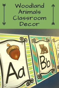 This decor set is perfect for anyone with a Woodland Animals or Forest themed classroom.  It's colorful, fun, and contains so many great decorations.  It has number and alphabet charts, labels, desk name plates, shape posters, color posters, classroom job, schedule, and Birthday charts and so much more!