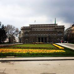 Belgrade 2014