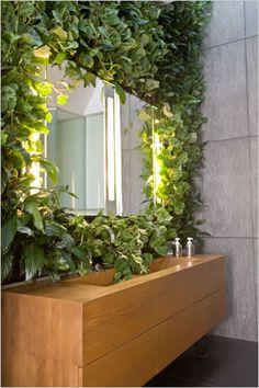 lo specchio è incastonato da piante sempreverdi