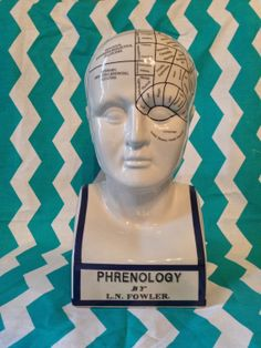 Medical Oddity,Phrenology Head by L.N Fowler, Industrial Oddity, phrenology and palmistry  on Etsy, $80.00