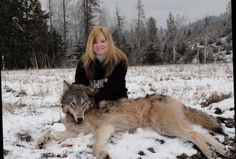 coyote i shot | Op-Ed: Idaho wolf/coyote killing derby wants double the area for hunt