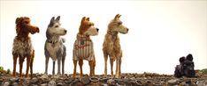 """""""Olemme lauma pelottavia, kaikenkestäviä alfauroksia."""" ISLE OF DOGS elokuvateattereissa 11.5.2018 🎬  #IsleOfDogs #AutaAtaria #WesAnderson #BillMurray #ScarlettJohansson #FrancesMcDormand #GretaGerwig #LievSchreiber #koirat #seikkailu #sekarotuisetystävät #foxsearchlight #elokuva #leffa #nordiskfilmfinland"""