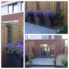 Voorbeeld tuinontwerp kleine tuin google zoeken tuin pinterest tuinontwerp zoeken en google - Eigentijds pergola hout ...