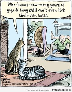 Funny cartoons – Goodies from the comic world   PMSLweb