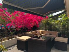 Outdoor Furniture Sets, Outdoor Decor, Fence, Jade, Planters, Villa, Home Decor, Decoration Home, Room Decor