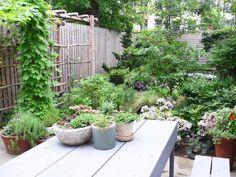 Contemporary | Living Rooms | S Interiors : Designer Portfolio : HGTV - Home & Garden Television#//room-living-rooms