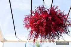 Lustre de flores