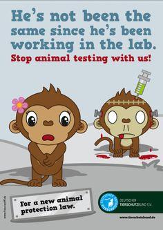 Monkeys against animal testing