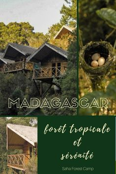 Madagascar - Le Saha Forest Camp est l'endroit parfait pour relaxer dans la forêt tropicale. En plus, c'est un écolodge resposable qui encourage l'économie local. On aime! | Où dormir à Madagascar | #Madagascar #Hebergement #voyage #jungle #Forest