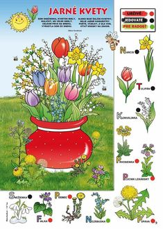 Spring Activities, Activities For Kids, Spring Flowers, Diy And Crafts, Kindergarten, Jar, Easter, Education, Marvel