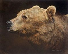Montana Grizzly - Grizzly Bear (SOLD) by Sandra Blair