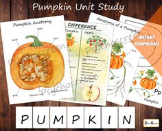 PUMPKIN Unit Study • MINI Printable pumpkins bundle • Anatomy set, Difference poster • Fall activities for preschool • Montessori materials by PsychoScreen on Etsy Emotions Wheel, Vintage Backdrop, Circle Game, Fun Fall Activities, Kids Calendar, Montessori Materials, Classroom Themes, Unit Studies, Pumpkins