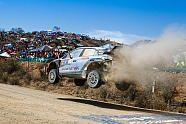 Rallye Mexiko 2016 Tag 2 - WRC Bilder Fotos bei Motorsport-Magazin.com