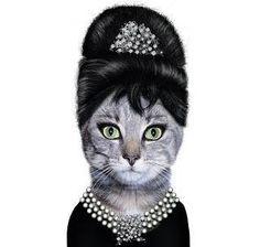 """Audrey Hepburn """"Cat"""""""