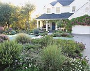 15 fool-proof shrubs http://www.thisoldhouse.com/toh/article/0,,219981-3,00.html