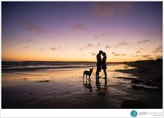 Steffi + Andrew's Eshoot I LOVE THIS ENGAGEMENT PHOTO!!  Love the silhouette against the gorgeous beach sunset, and the way the dog is cocking his head to one side...because I can imagine how cute he looks. This is definitely an photo you want on canvas!!   Jade Norwood Engagement Photos - jadenorwood.com