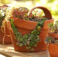 Follow our step-by-step instructions to turn broken pots into unusual container gardens.
