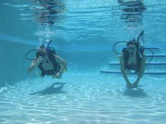#TryScuba #FloridaKeys These students are trying Scuba for the first time with Sail Fish Scuba dive shop in Key Largo, FL Keys