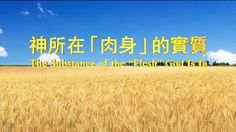 "【Almighty God】【The Church of Almighty God】【Eastern Lightning】Almighty God's Utterance ""The Substance of the 'Flesh' God Is In""_C"