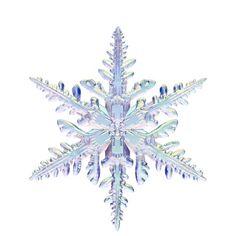 ネイチャーテクニカラー公式 / NATURE TECHNI COLOUR MONO / 雪の結晶 チャームストラップ
