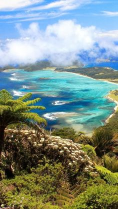 Lord Howe Island, Tasman Sea, New South Wales, Australia - Explore the World with Travel Nerd Nici, one Country at a Time. http://travelnerdnici.com