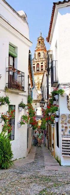 Wonderful Cordoba http://www.travelandtransitions.com/european-travel/