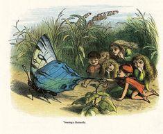 The Generous Lilacs: Richard Doyle and John Tenniel Fairy Land, Fairy Tales, Richard Doyle, Dickie Bird, Fairy Paintings, John Tenniel, Victorian Books, Enchanted Doll, Elves And Fairies