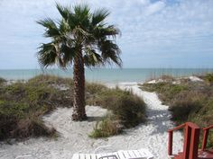 view of the beach at the granger house. Indian Rocks Beach, Florida
