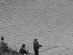 Fishing Trio, via Flickr.
