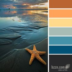 for guest room and hall bath..  accents some of the colors that already exist