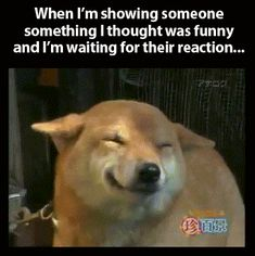 Waiting for my friend's reaction…