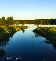 So schnell kann die #Natur wieder aufblühen.. Als ob der Winter garnicht da gewesen wäre 🌿🌸 #KalevalaSpirit #Finnland #Natur