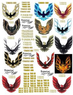 firebird transam decals for diecast, model cars & dioramas displays - Marine And Land Vehicles Hot Wheels, Smokey And The Bandit, Pontiac Cars, Pontiac Firebird Trans Am, Mustang Cars, Us Cars, American Muscle Cars, Car Decals, Car Pictures