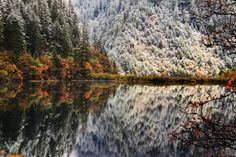 """Jiuzhaigou (Jiw-Jai-Gow) or Jiuzhai Valley is a national park and world heritage site in Sichuan Province of China. It has been called """"Heaven on Earth"""","""