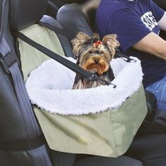 Lookout Dog Car Seat seating for Alaska in new SUV