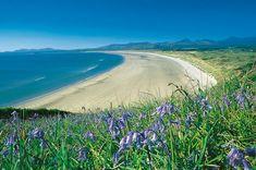 Harlech Beach, Gwynedd, Wales