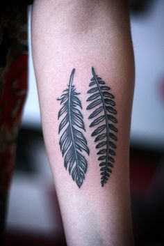 ferns and feathers tattoo