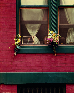 Evelyn Hofer, 8th Street, Washington 1965 #photography