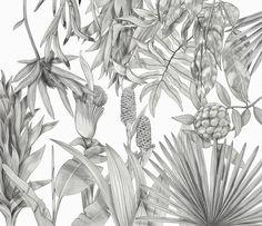· Tropical Garden : marta zafra