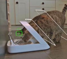 This Pet Feeder Scans Your Pet To Make Sure The Right Pet Eats The Right Food
