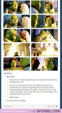 """The Deeper Meanings Of """"Shrek""""… I love the Shrek movies, they're the epitome of a perfect relationship through 4 films."""