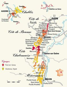 bourgogne wine map