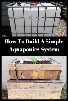 Are you thinking of starting your own hydroponics garden? When it comes to DIY hydroponics, you can afford to choose between very simple techniques and complex ones. Aquaponics Greenhouse, Aquaponics Fish, Aquaponics System, Hydroponic Gardening, Organic Gardening, Hydroponic Systems, Vegetable Gardening, Gardening Tips, Diy Greenhouse