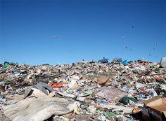 Sweden to Import Garbage as Trash Supplies Run Dry : TreeHugger