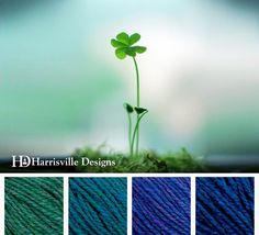Clover color palette using Harrisville shetland yarn: Seagreen, Peacock, Iris, Cobalt.